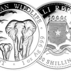 Éléphant de Somalie : 1 once Argent